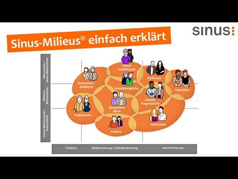 Sinus-Milieus einfach erklärt (Erklärvideo / Explainer video)